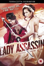 The Lady Assassin (2013)